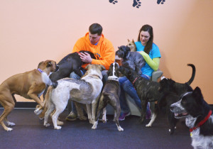 Dog Daycare Redmond Oregon About Us