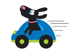 Dog Shuttle services at Zipidy Do Dog Daycare
